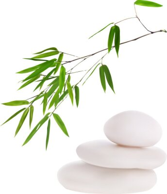 Väggdekor isolated white stones and green bamboo illustration