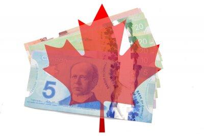 Väggdekor Kanadensisk lönnlöv med dollar på vit bakgrund