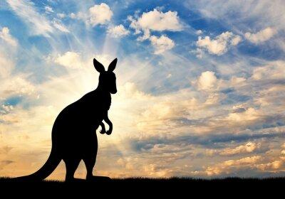 Väggdekor Känguru silhuett mot en himmel