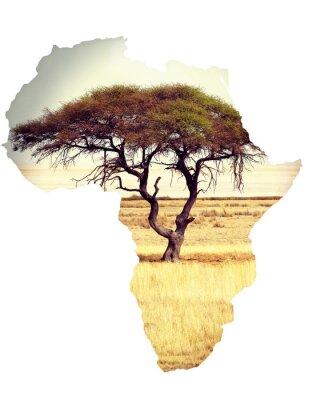 Väggdekor Karta över Afrika kontinenten koncept med akacia