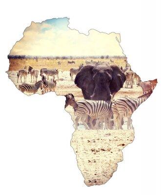 Väggdekor Karta över Afrika kontinenten koncept, safari på vattenhål med elefanter