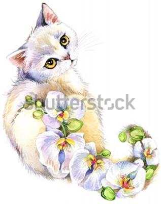 Väggdekor Katt. Blomma akvarellillustration.