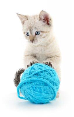 Väggdekor Katt med garnnystan