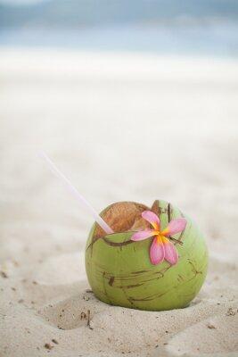 Väggdekor Kokos på stranden