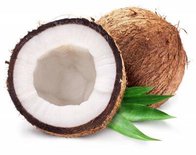 Väggdekor Kokosnötter och det är halva med blad.