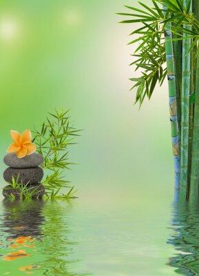 Väggdekor komposition aquatique avslappningsmassage zen