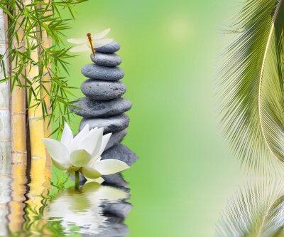 Väggdekor komposition bambou palmier galets zen aquatique