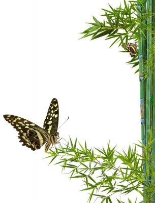 Väggdekor koncept naturen détente zen