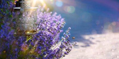Väggdekor konst sommaren eller våren vacker trädgård med lavendel