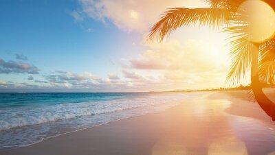 Väggdekor Konst Sommarlovet Ocean Beach