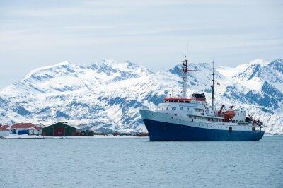 Väggdekor Kryssningsfartyg i Antarktis