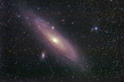 Väggdekor la Galassia di Andromeda
