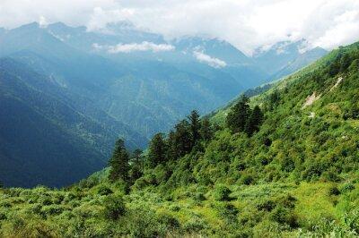 Väggdekor landskap av berg skog och dal