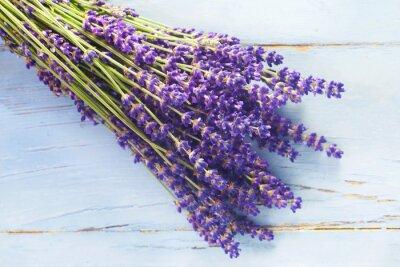 Väggdekor Lavendel