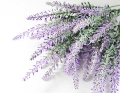 Väggdekor lavendel gren