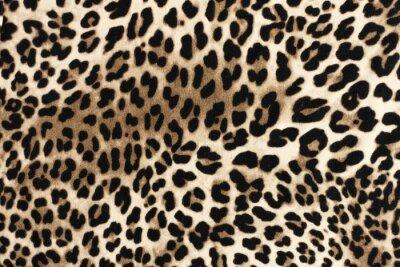 Väggdekor Leopard fablic texture. Fashion textile background.