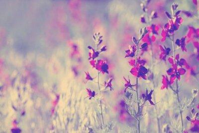 Väggdekor lila vilda blommor