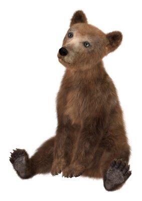 Väggdekor Little Brown Bear
