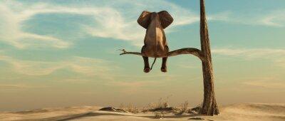 Väggdekor Lonely elephant on tree