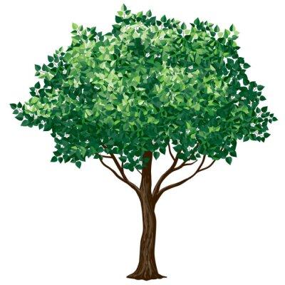 Väggdekor lövverk träd