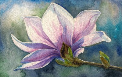 Väggdekor Magnolia blossom på branch.Watercolors.