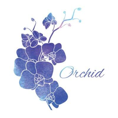 Väggdekor Målade Lila Vattenfärg Orchids