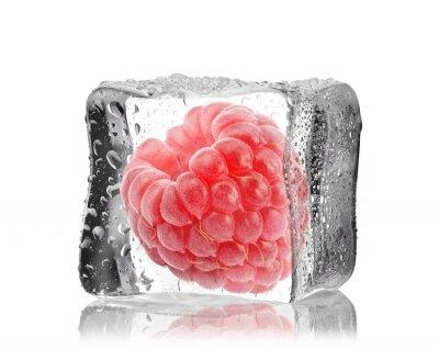 Väggdekor Malina w kostce lodu