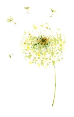 Väggdekor Målning, teckning, vektor illustration - luft maskrosor