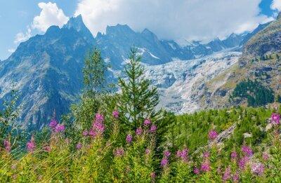 Väggdekor Mont Blanc Massive landskap