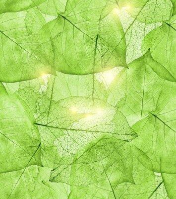Väggdekor mörkgröna blad bakgrund
