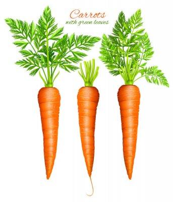 Väggdekor Morötter med blad