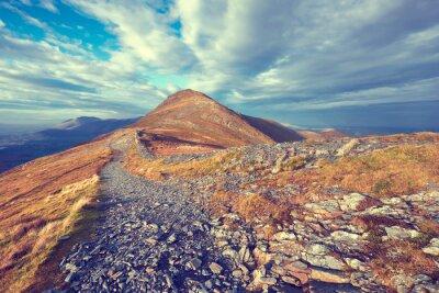 Väggdekor Mountain Trail