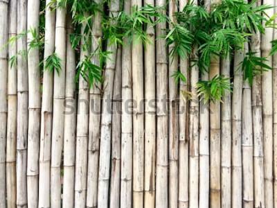 Väggdekor Naturlig bambubakgrund