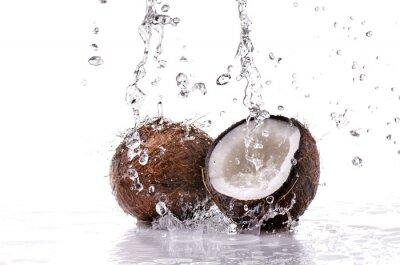 Väggdekor noce di cocco splash