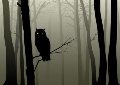 Väggdekor Owl i dimmiga Woods