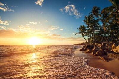 Väggdekor Palmer på Tropical Beach