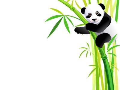 Väggdekor panda på bambu