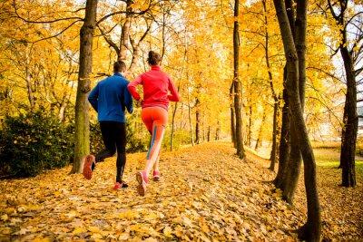 Väggdekor Par joggning i höst natur