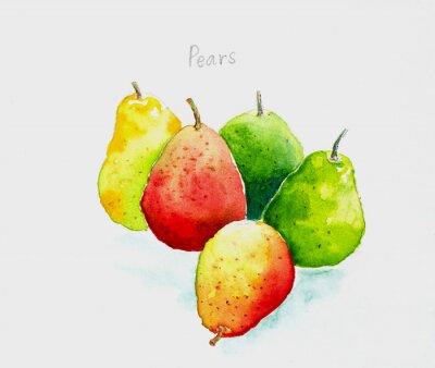 Väggdekor pears'watercolor målade
