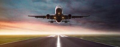Väggdekor Plan i Flight