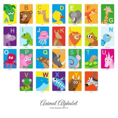 Väggdekor Platt alfabet djur