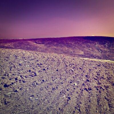 Väggdekor plöjd Hills