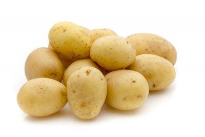 Väggdekor Potatis på vit bakgrund. Ny skörd.