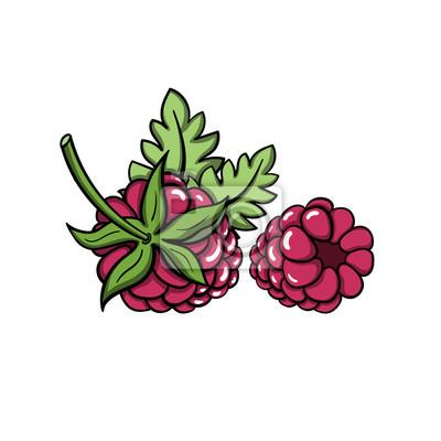 Väggdekor RaspberryVector
