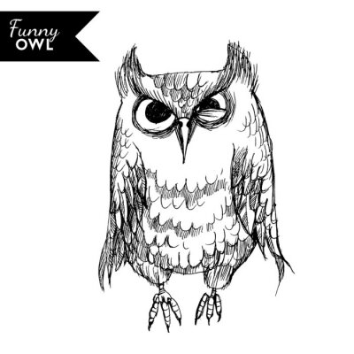 Väggdekor rolig owl karaktär