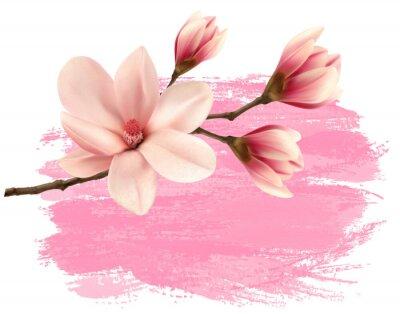 Väggdekor Rosa färg magnolia gren banner. Vektor.