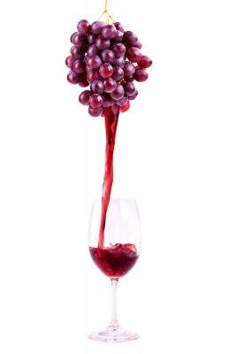 Väggdekor Rött vin från druvor
