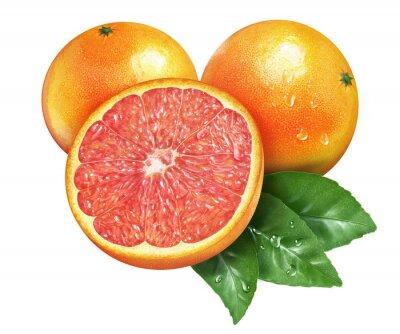 Väggdekor Saftig färsk grapefrukt på whtie bakgrund