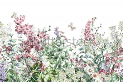 Väggdekor seamless rim. Border with Herbs and wild flowers, leaves. Botanical Illustration Colorful illustration on white background. Spring composition with butterfly