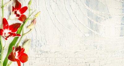 Väggdekor Shabby chic bakgrund med röda orkidé blommor, ovanifrån, plats för text.